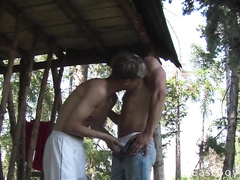 Gay passionately kisses his boyfriend's cock